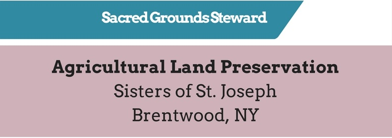 Sacred Grounds Steward - 2016 Cool Congregations